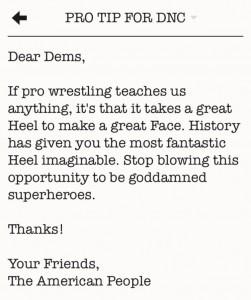 Dear Dems pro wrestling